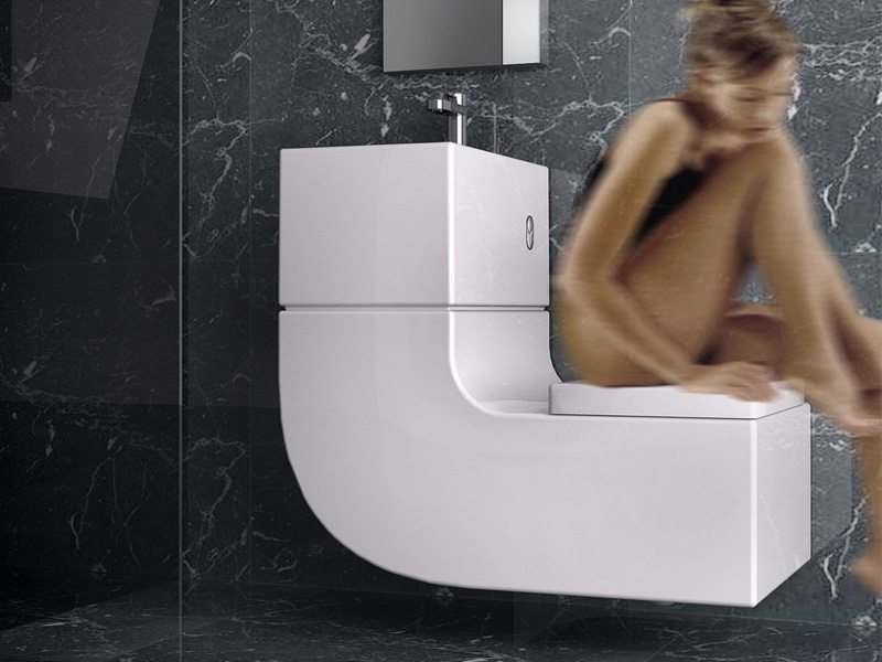 Expensive w+w toilet recycles water