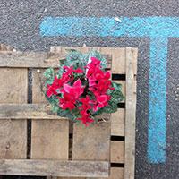 park(ing)day-2015-parking-web