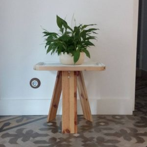 eco-design flower pots in apartment rentals